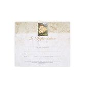 Warner Press, Appreciation Certificates and Envelopes, 8 1/2 x 11 inches, Set of 6