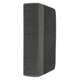 NIV Giant Print Compact Bible, Imitation Leather, Multiple Colors Available