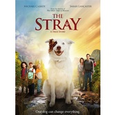 The Stray: A True Story, DVD