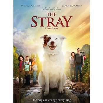 The Stray: A True Story, DVD