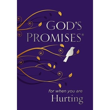 God's Promises For When You Are Hurting, by Jack Countryman