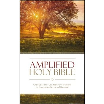AMP Amplified Thinline Bible, Multiple Styles Available