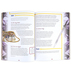 Rose Publishing, Exploring the Bible Through History Book, by Amber Pike, Paperback, 11 x 8 Inches, 208 Pages