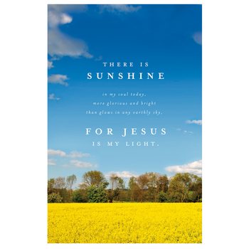 Salt & Light, Sunshine In My Soul Church Bulletins, 8 1/2 x 11 inches Flat, 100 Count