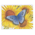 Product Concept Manufacturing, Butterfly Die-Cut Note Cards with Envelopes, 12 Cards & Envelopes