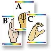 Sign Language & Braille Learn Cards