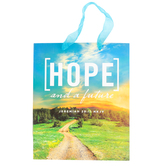 Medium Hope and A Future Gift Bag, Paper, Blue/Green