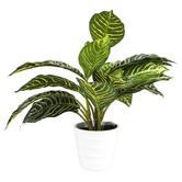 Artificial Zebra Plant in Pot, Plastic, Green & White, 11 x 11 inches