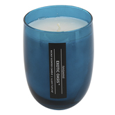 Exotic Oasis Jar Candle, Glass, Blue, 16 ounces, 5 x 3 3/4 inches