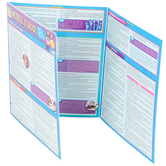 BarCharts Inc, Middle School Tips and Tricks, Quick Study Academic Guide, Laminated, Grades 5-9