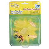 Insect Lore, Bee Life Cycle Figurines, Multi-Colored, Ages 4 Years and Older, 4 Pieces