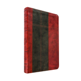 KJV Study Bible, Duo-Tone, Brown and Tan, Thumb Indexed