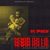 Never Too Late, by 1K Phew, CD