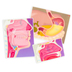Roylco, My Body In Action Animation Cards, 10 Cards, 8 x 11 inches