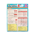 BarCharts, English 5th Grade Laminated Quick Study Guide, 8.5 x 11 Inches, 6 Pages, Grade   5