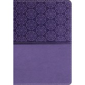 NIV Student Bible, Imitation Leather, Lavender