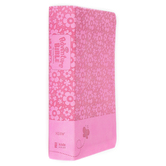 NIrV Adventure Bible for Early Readers, Imitation Leather, Hot Pink