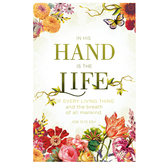 Salt & Light, In His Hand Is The Life Church Bulletins, 8 1/2 x 11 inches Flat, 100 Count