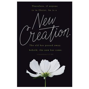Salt & Light, New Creation Church Bulletins, 8 1/2 x 11 inches Flat, 100 Count