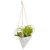Artificial Succulents in Hanging Triangle Planter, Black and White Marble, 18 1/2 x 6 x 5 1/2 inches