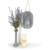 Galvanized Metal Wall Decor with Glass Bottle, Silver, 11 5/8 x 7 9/16 inches