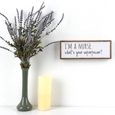 I'm A Nurse What's Your Superpower Framed Plaque, MDF, 12 3/8 x 4 1/2 inches