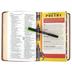 CSB Kids Bible, Imitation Leather, Brown, Lion Design