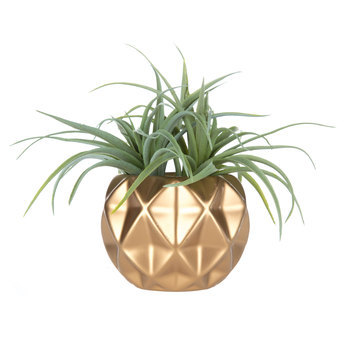 Artificial Air Plant in Gold Pot, Plastic, Green, 8 x 6 inches