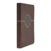 NRSV Thinline Reference Bible, Large Print, Imitation Leather, Brown