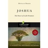 Lifeguide Bible Studies Series: Joshua: The Power of God's Promises