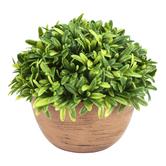 Artificial Rosemary in Terra Cotta Pot, Green & Orange, 5 1/2 x 4 1/4 x 2 1/4 inches