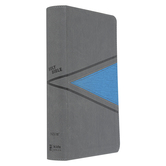 NIV Boys Bible, Imitation Leather, Gray & Blue