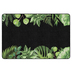 Flagship Carpets, Schoolgirl Style Simply Boho Greenery on Black Rug, 5-foot x 7.6 Foot