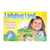 Insect Lore, Ladybug Land: Ladybug Growing Kit, Ages 4 & Older