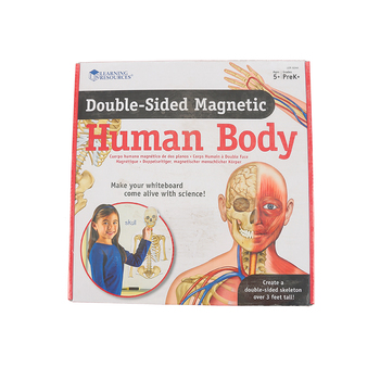 Learning Resources, Double-Sided Magnetic Human Body Set with Activity Guide, 17 Pieces, Grades K and up