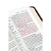 NLT Slimline Center-Column Reference Bible, Duo-Tone, Brown and Tan