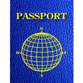 Ashley Inc., Blank Passports, 4 x 6 Inches, Blue, Pack of 12
