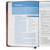 NLT Christian Basics Bible, Duo-Tone, Brown and Tan, Thumb Indexed