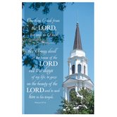 Salt & Light, One Thing I Ask Church Bulletins, 8 1/2 x 11 inches Flat, 100 Count