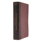 NLT Teen Life Application Study Bible, Leatherlike, Multiple Colors Available
