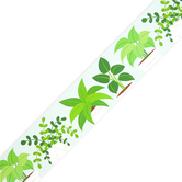 Creative Teaching Press, Positively Plants Potted Plants EZ Border, Greens and White, 48 Feet, 24 Pieces