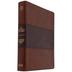 CSB Apologetics Study Bible, Imitation Leather, Mahogany