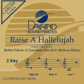 Raise A Hallelujah, Accompaniment Track, As Made Popular by Bethel Music, CD