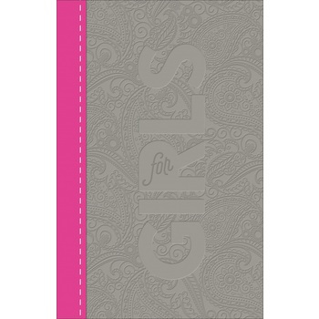 CSB Study Bible for Girls, Imitation Leather, Pewter and Pink