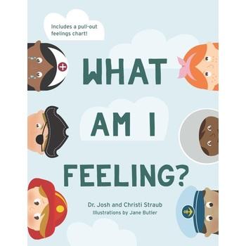 What Am I Feeling, by Josh Straub and Christi Straub, Hardcover