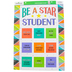 Renewing Minds, Be A Star Student Motivational Chart, 17 x 22 Inches, 1 Each