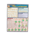 BarCharts, American Sign Language, 8.5 x 11 Inches, 4 Pages, Grades K and up
