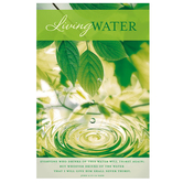 Salt & Light, Living Water Church Bulletins, 8 1/2 x 11 inches Flat, 100 Count