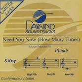 Need You Now (How Many Times), Accompaniment Track, As Made Popular by Plumb, CD
