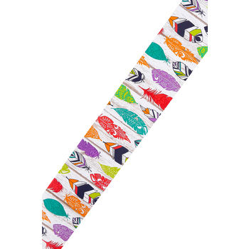Renewing Minds, Wide Border Trim, 38 Feet, Colorful Feathers